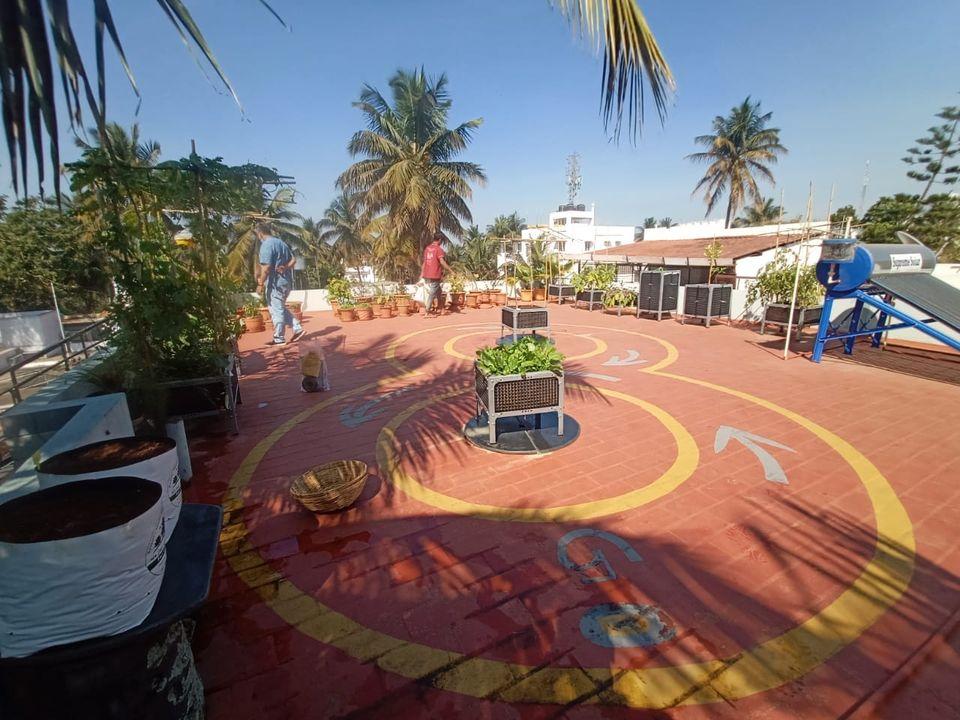 Terrace Garden Setup in Mysore
