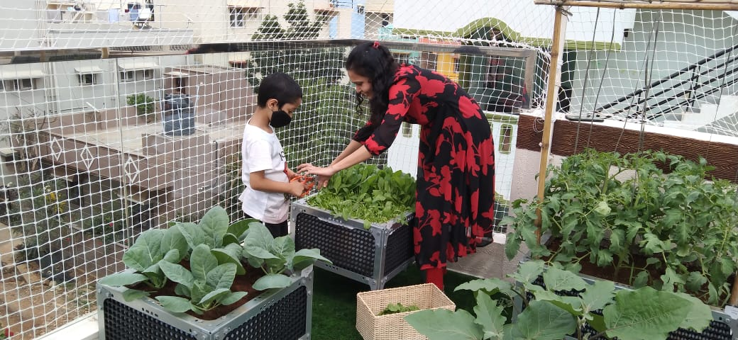 Child Learning from mother on Terrace Gardening